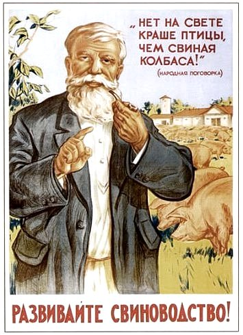 Свиная колбаса