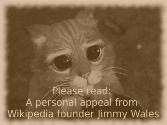 Please read: A personal appeal from Wikipedia founder Jimmy Wales